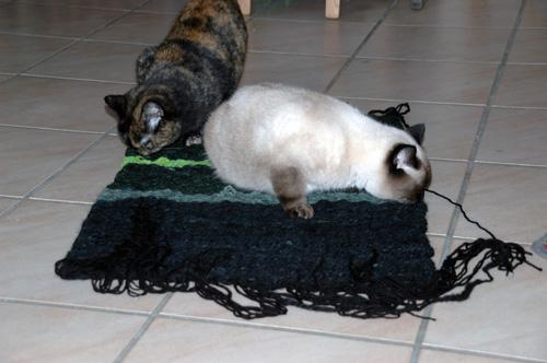 Katzenteppich von Euredike